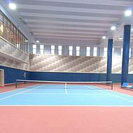 羽毛球运动地板MT0245X